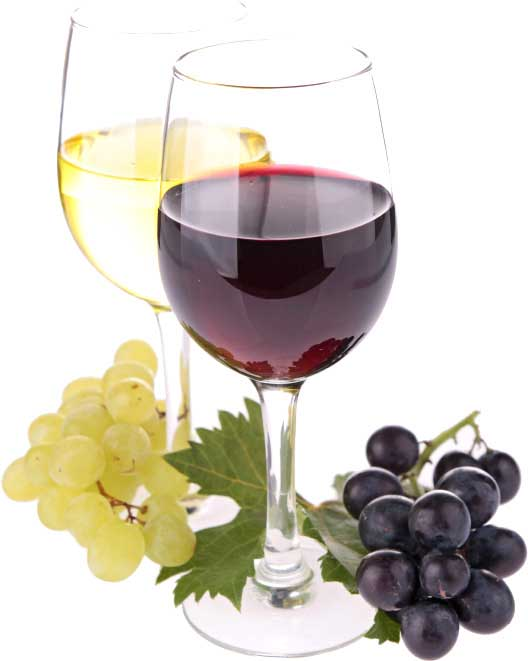 about-wine-society